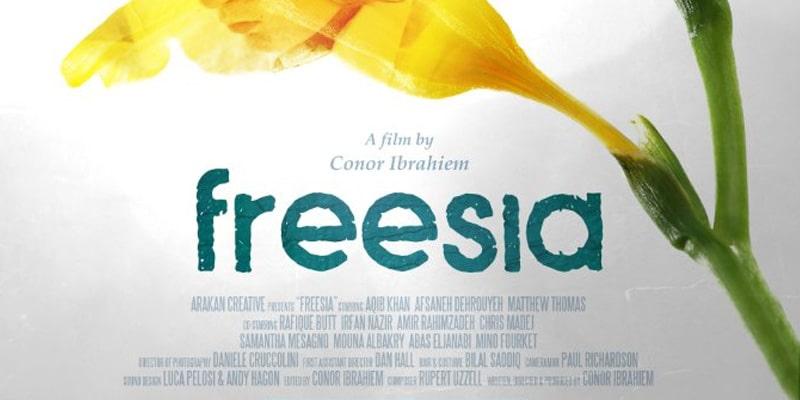 freesia_web